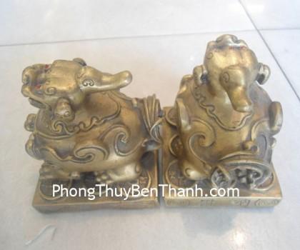 cap-ty-huu-dong-ngoi-d1115-02-420x350